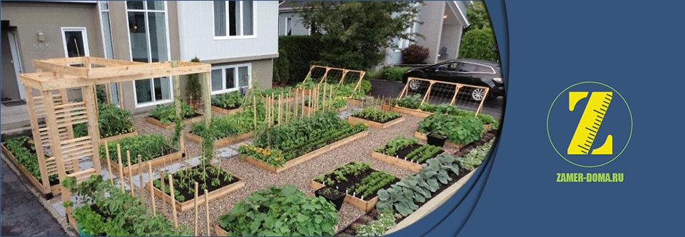Дом с огородом